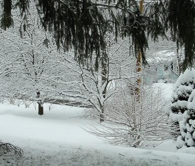 Snowfall on New Year's Eve 2007