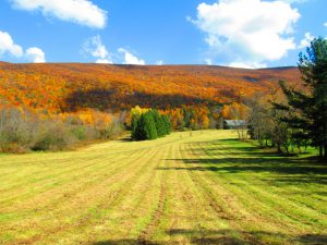 Taconic Hills - photo by Bill Siever