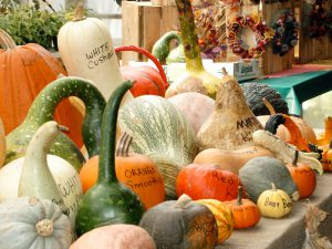 Squash - with names